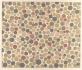 tablica barwna do badania daltonizmu